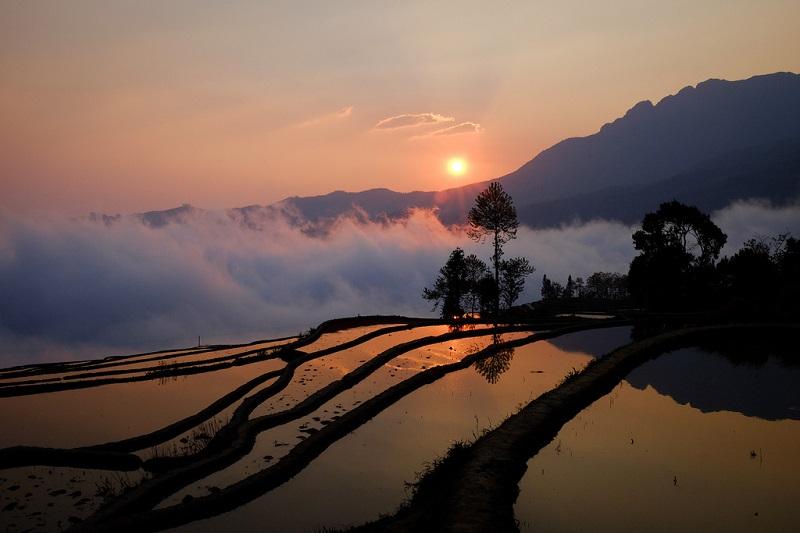Хунхэ-Хани – когда выращивание риса превращает местность в произведение искусства