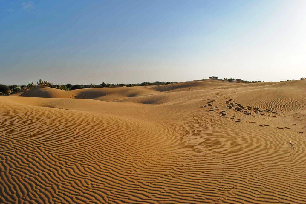 Олешковские пески – украинская пустыня