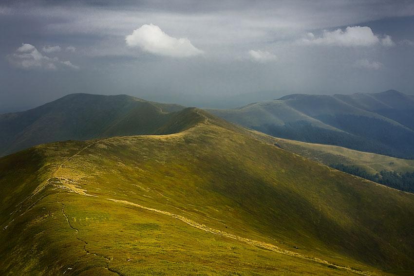 Боржава – самый длинный альпийский луг Закарпатья.Вокруг Света. Украина