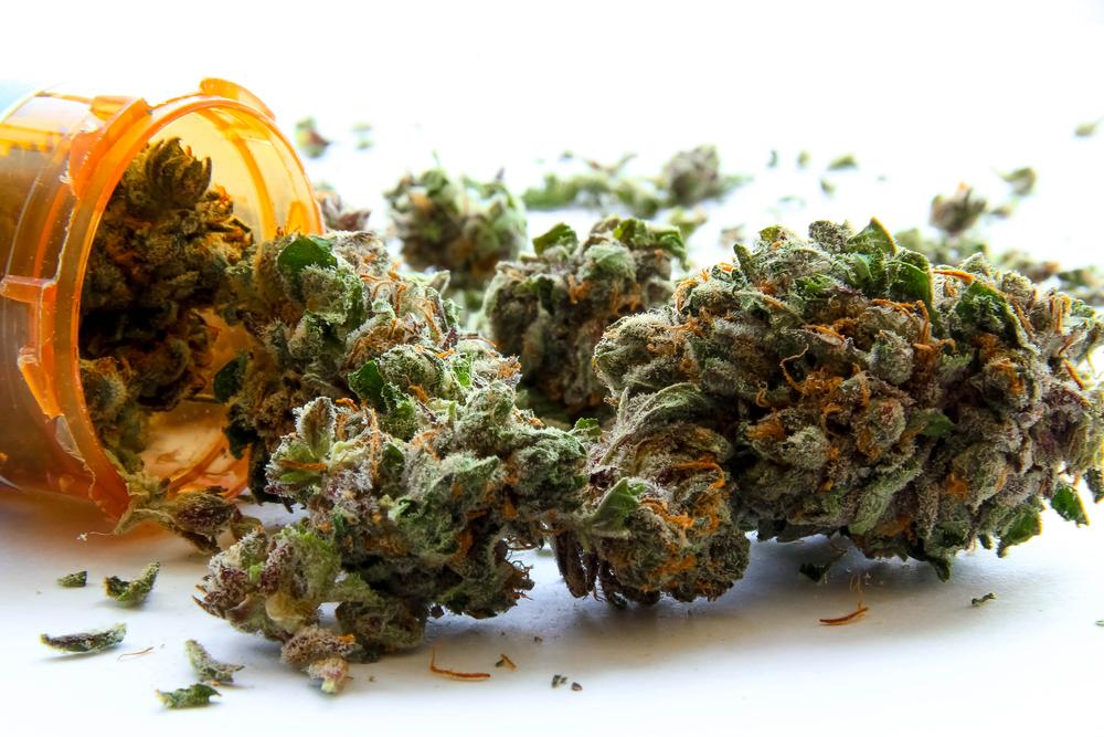 Канада планирует легализовать марихуану.Вокруг Света. Украина