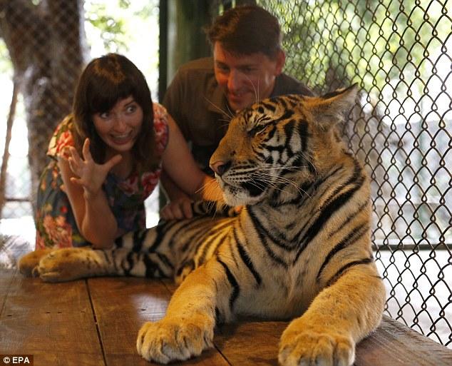 Животные на службе у туристов: во что превратилась их жизнь?