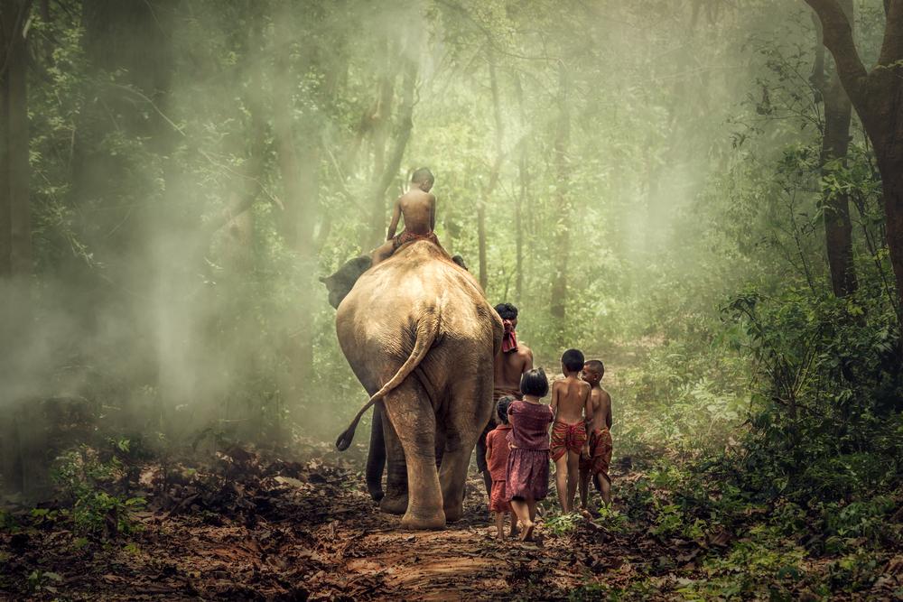 Наедине с дикой природой: реальные истории детей-маугли