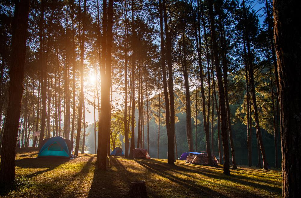 Где отдохнуть в Украине с палаткой: 7 заманчивых идей