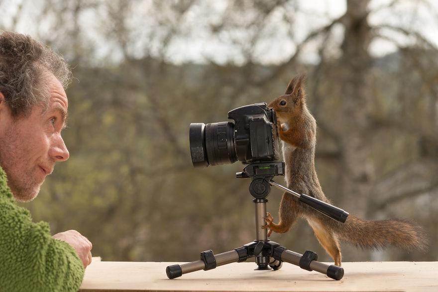 Белка и фотограф поменялись местами