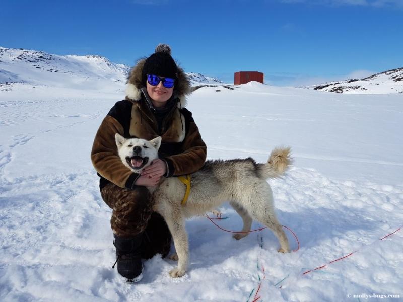 Что необходимо знать до поездки в Гренландию