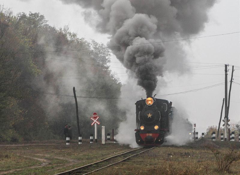 В августе по Боржавской узкоколейке запустят послевоенный немецкий паровоз