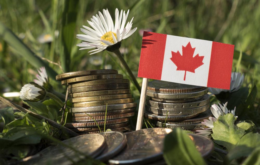 В Канаде появится первая в мире монета, светящаяся в темноте.Вокруг Света. Украина