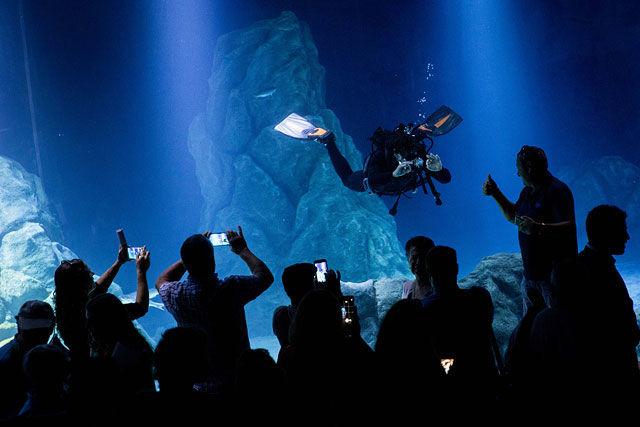 Первый в мире океанариум в городе без моря открылся в Иерусалиме