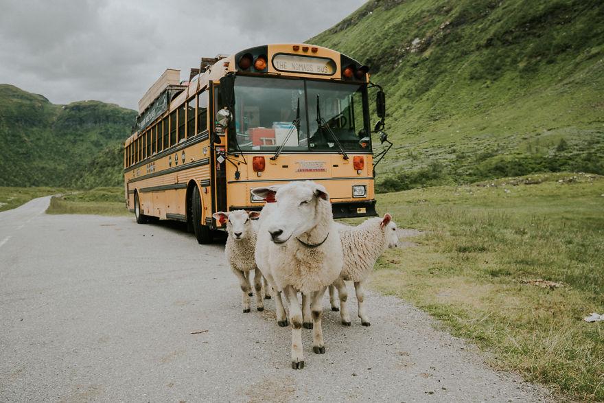Семейная пара из Бельгии превратила школьный автобус в отель-люкс