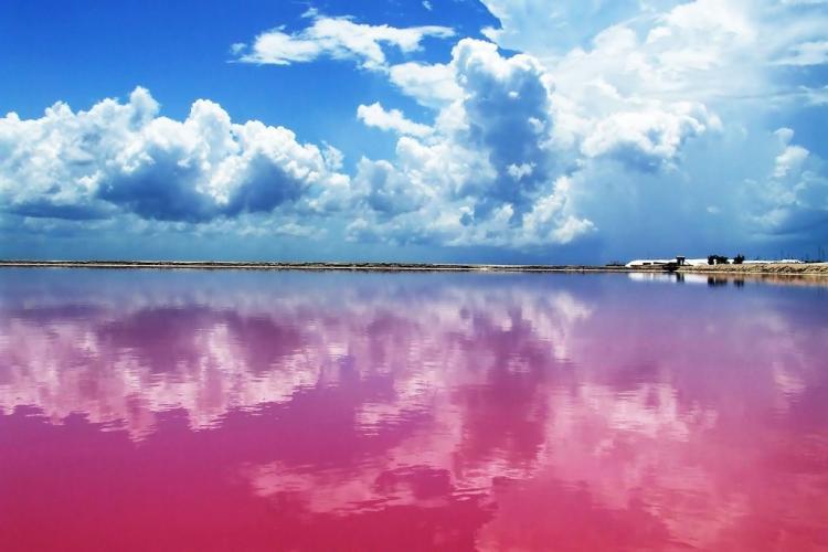 Удивительная лагуна в Мексике: за что ее любят розовые фламинго