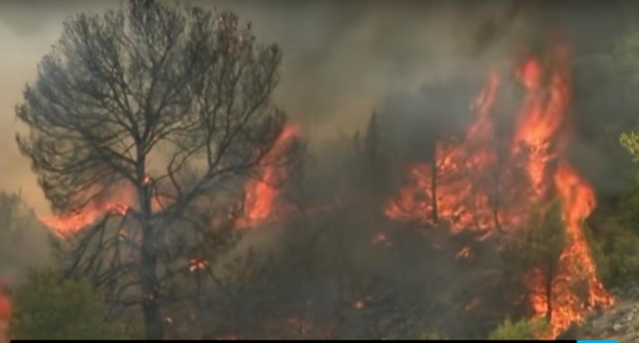 Из-за пожара на Лазурном берегу Франции эвакуированы тысячи людей: видео
