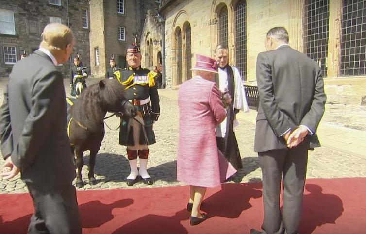 Пони поприветствовал Елизавету II, попытавшись съесть ее букет