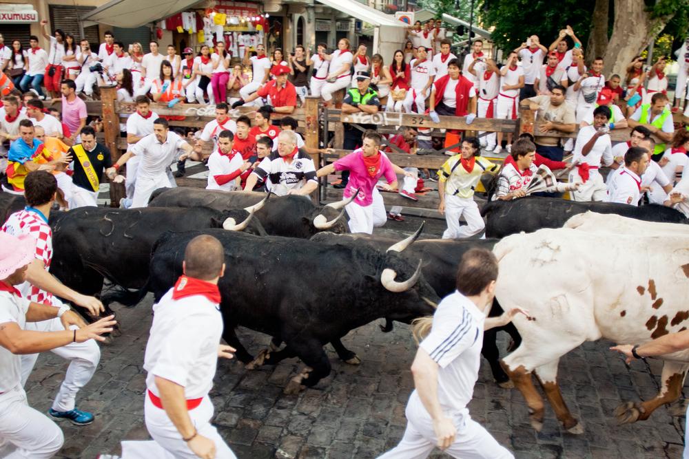 Как забег с быками в Памплоне превратил клерка в капитана дальнего плавания
