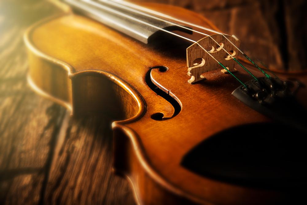 Месть после развода: японка уничтожила коллекцию старинных скрипок стоимостью $1 млн