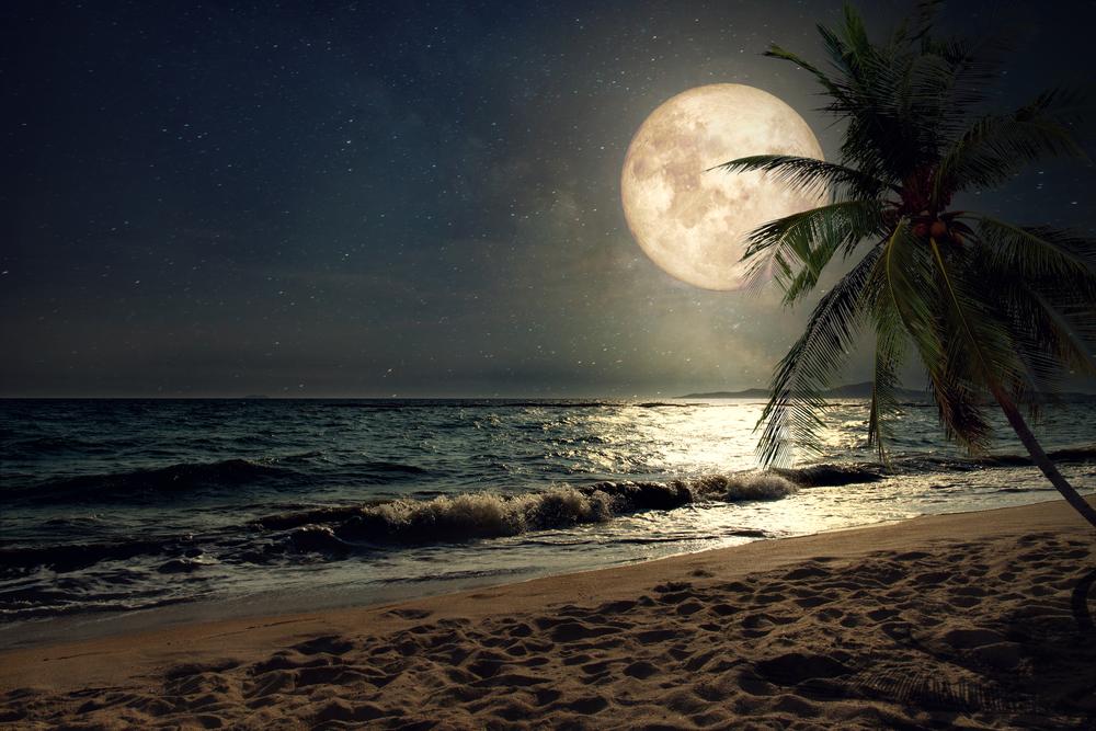 На Луне обнаружили большие запасы воды.Вокруг Света. Украина
