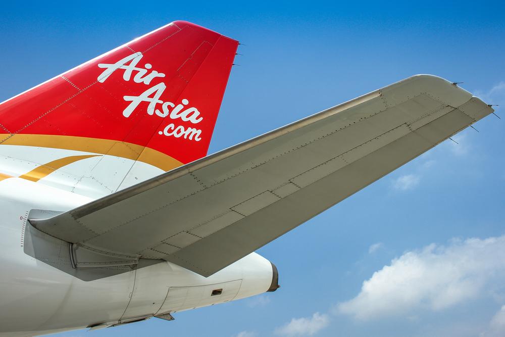 Пассажиры самолета попрощались с жизнью из-за встречи с птицей
