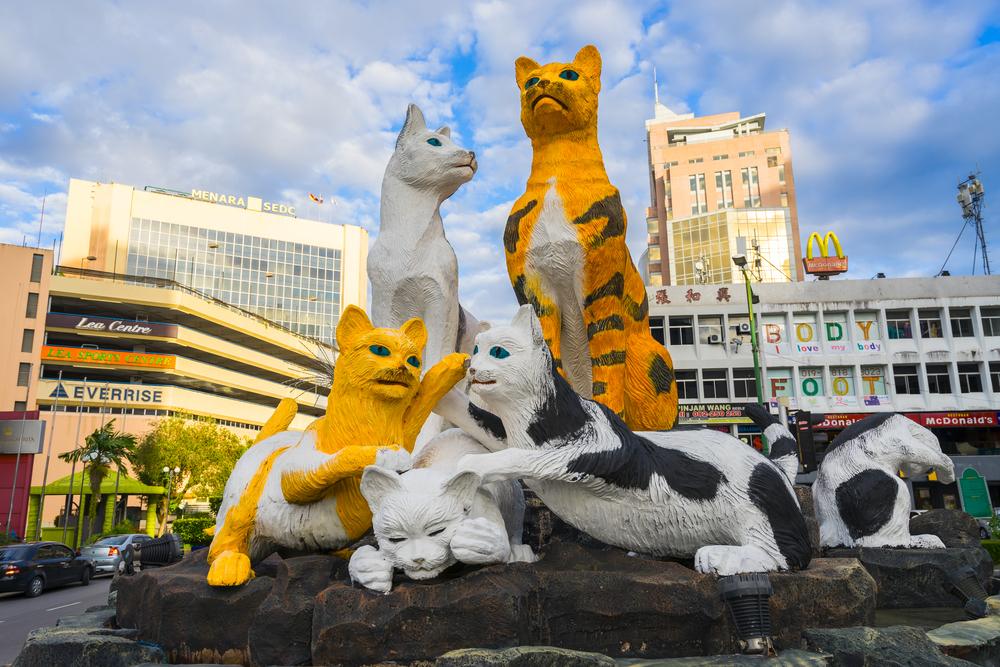 Кучинг – город тысячи котов