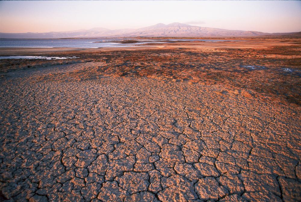 Уникальное красное озеро Натрон, которого боятся животные и любят фламинго