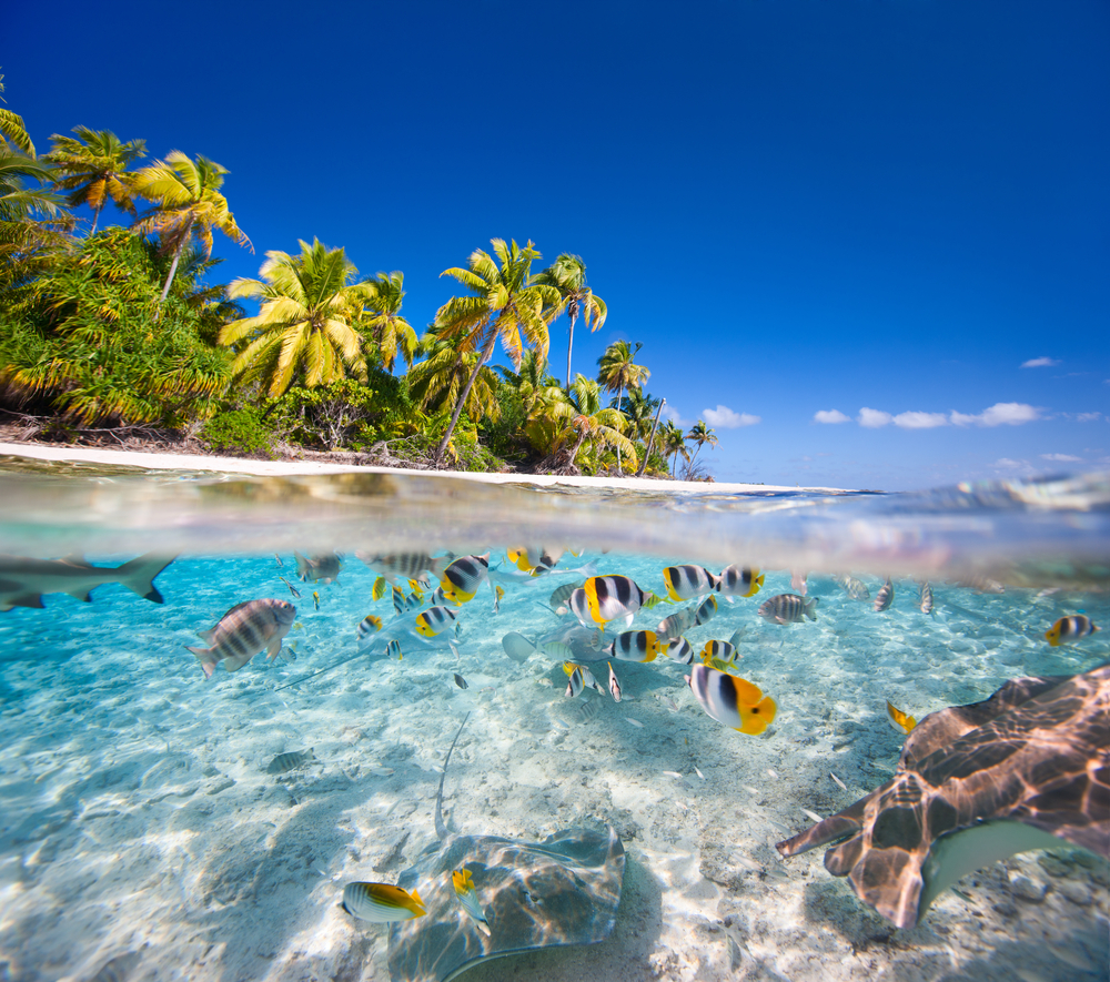Названа десятка лучших пляжей мира