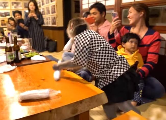 В японском ресторане официантами работают макаки.Вокруг Света. Украина