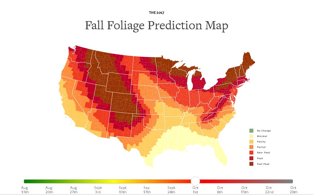 В США создали интерактивный гид по осени