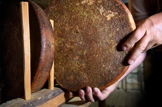 В Швейцарии нашли съедобный сыр 142-летней выдержки