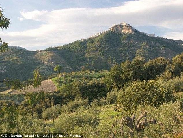 Археологи нашли на Сицилии самое древнее итальянское вино