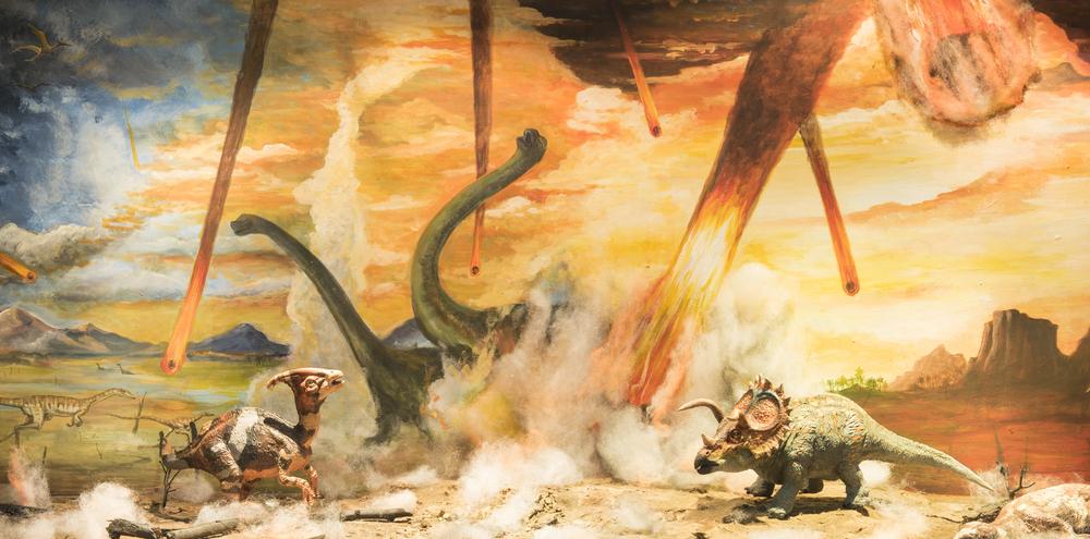 Астероид, убивший динозавров, на полтора года потушил свет на Земле.Вокруг Света. Украина