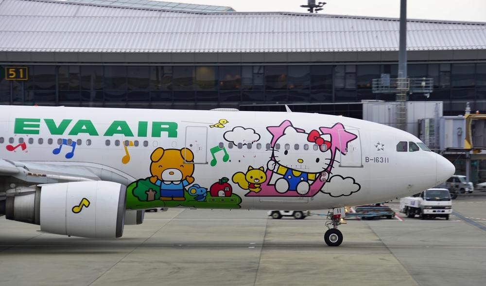 В Тайване запустили тематические авиарейсы с кошачим принтом