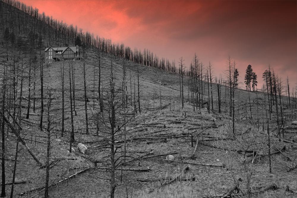 Пожары, потопы, зной? Ученые предупреждают: будет хуже!.Вокруг Света. Украина