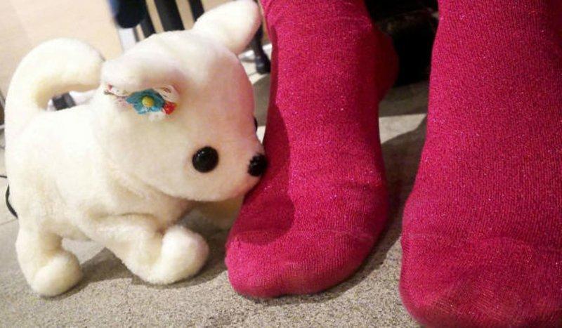 В Японии роботу поручили оценивать чистоту носков