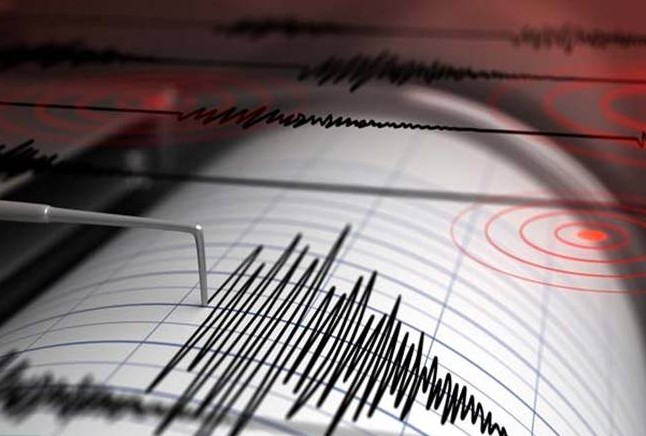В Мексике ждут цунами из-за сильнейшего за 100 лет землетрясения (видео)