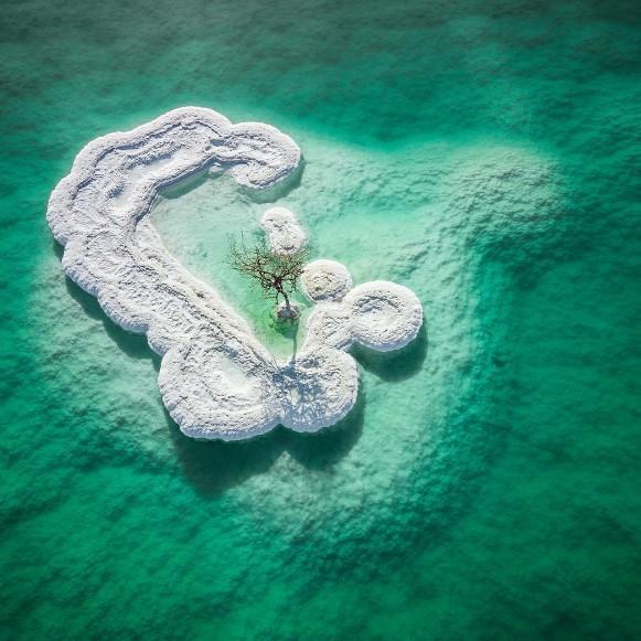 Израильский фотограф разглядел в Мертвом море жизнь.Вокруг Света. Украина