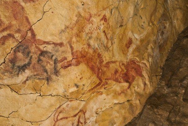 В Испании найдены наскальные рисунки, которым 30 тыс. лет