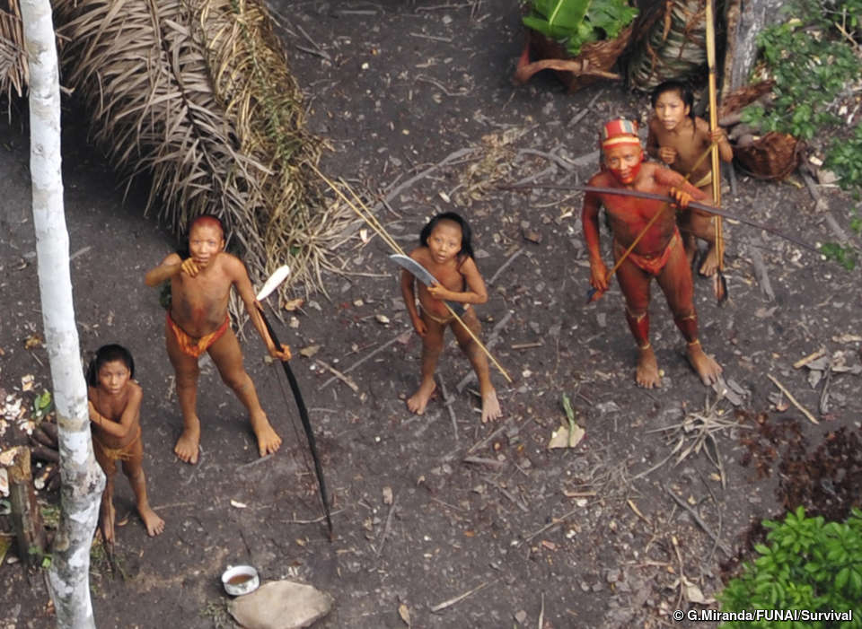 plemena-amazonii-video-seks