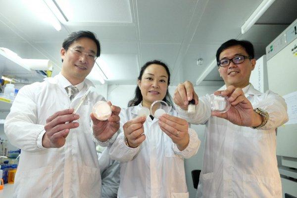 Ученые создали искусственную кожу, заживляющую раны