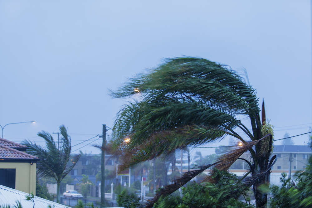 «Началось!»: украинка рассказала об урагане «Ирма» в Доминикане