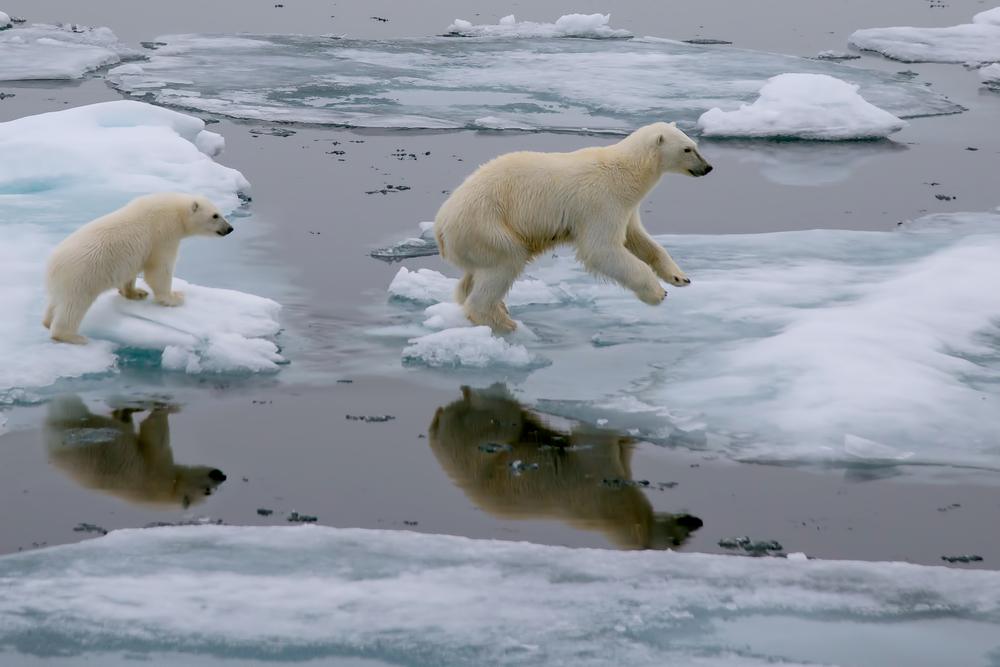Глобальное потепление отменяется? Ученые изменили прогнозы