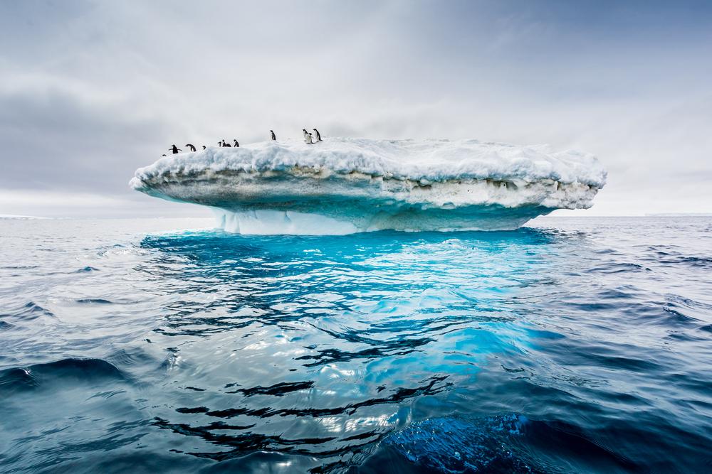 Льда в Антарктиде стало слишком мало: ученые объяснили, чем это грозит