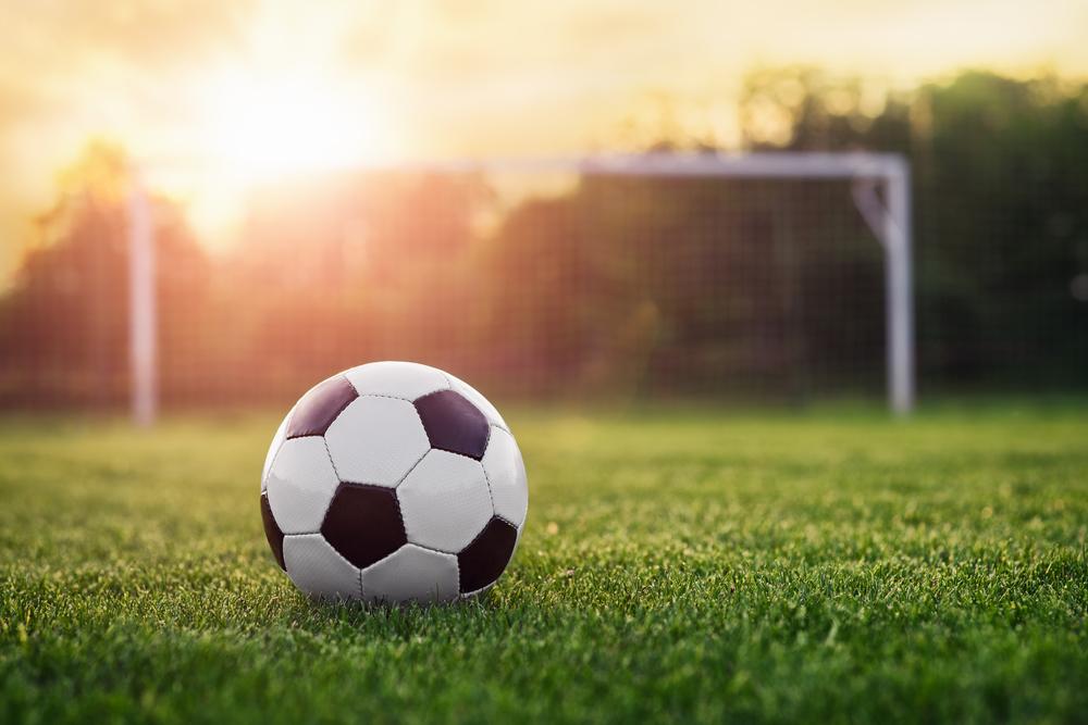 В Аргентине собака сорвала матч, отобрав у футболистов мяч