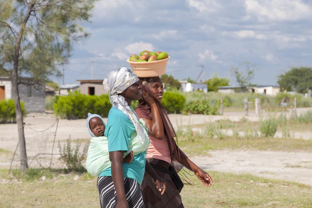 День Ботсваны