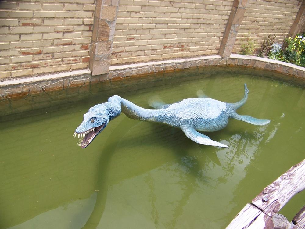 Ученые разгадали загадку странных плавников плезиозавров.Вокруг Света. Украина