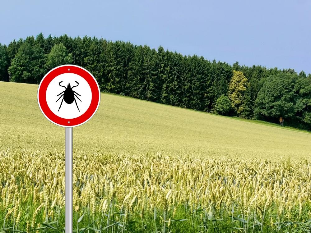 Глобальное потепление спасет от паразитов, но ударит по экосистеме.Вокруг Света. Украина