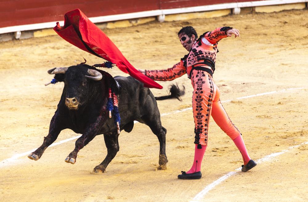 Коррида в Испании – жить или умереть бою быков?