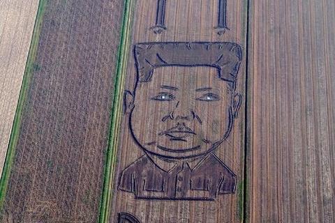 В Италии на соевом поле появился гигантский Ким Чен Ын