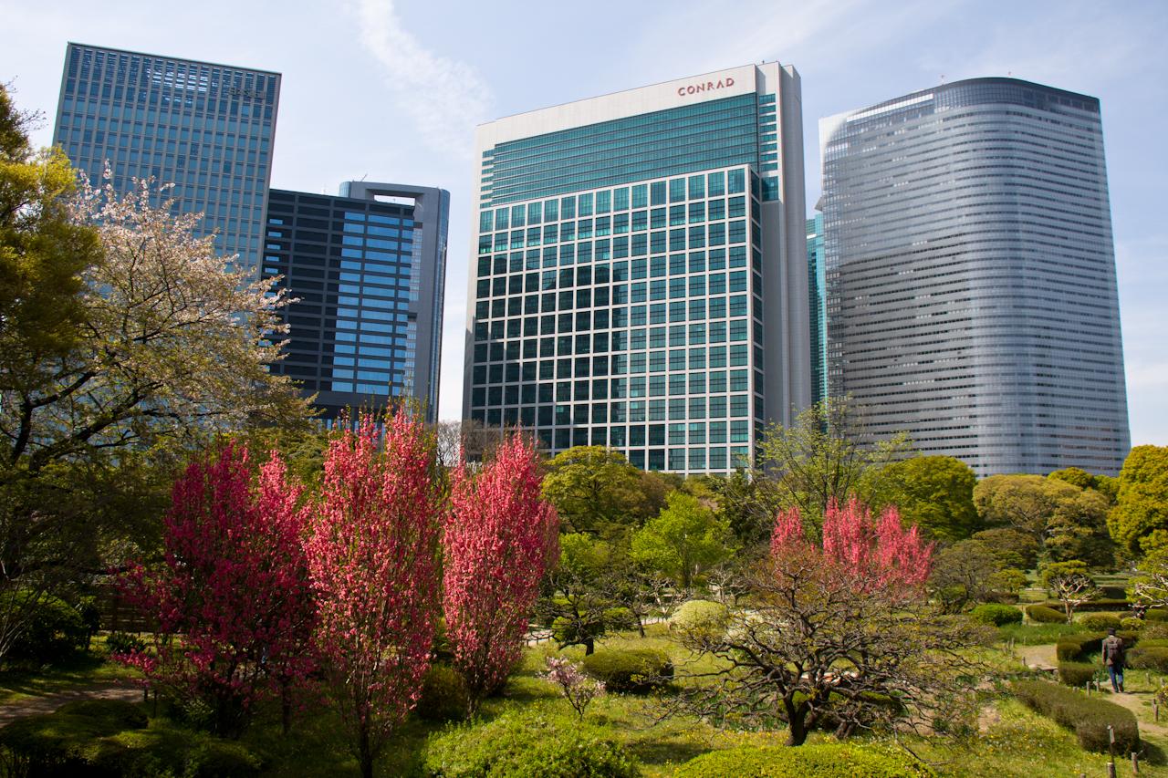 Как я оказалась в Японии и почему осталась здесь жить.Вокруг Света. Украина