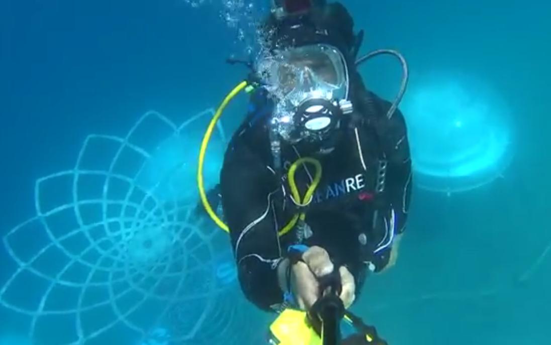 Сады Немо: дайверы Италии выращивают клубнику в океане