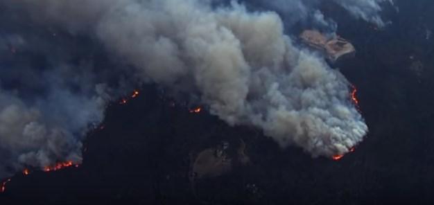 Лесные пожары в Калифорнии: число жертв растет