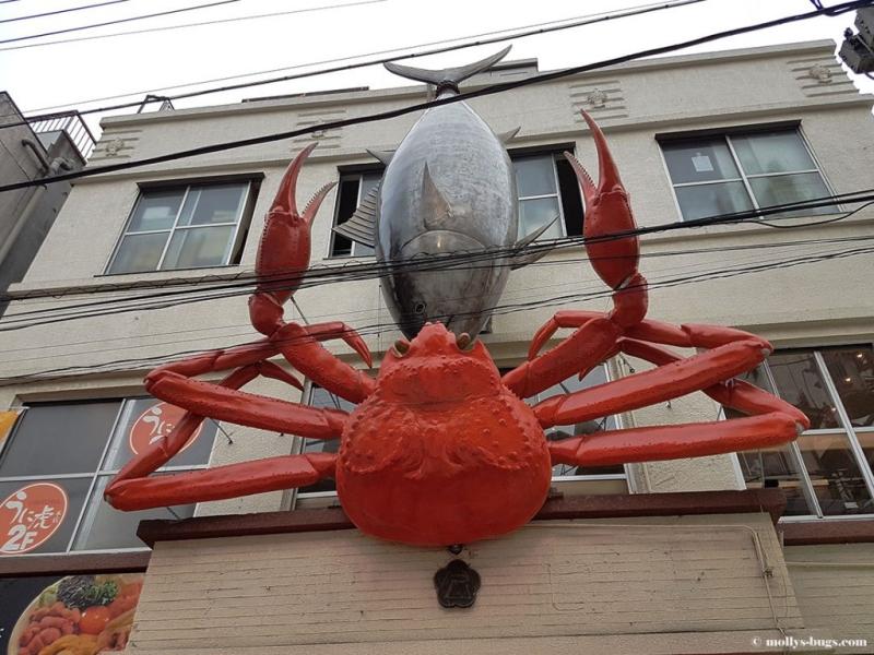 Осьминоги, омары и мясо китов: рыбный рынок в Токио