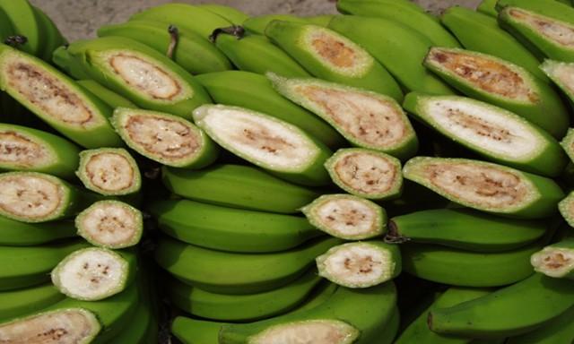 Миру грозит банановая катастрофа.Вокруг Света. Украина